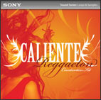 Caliente: Reggaeton Construction Kit