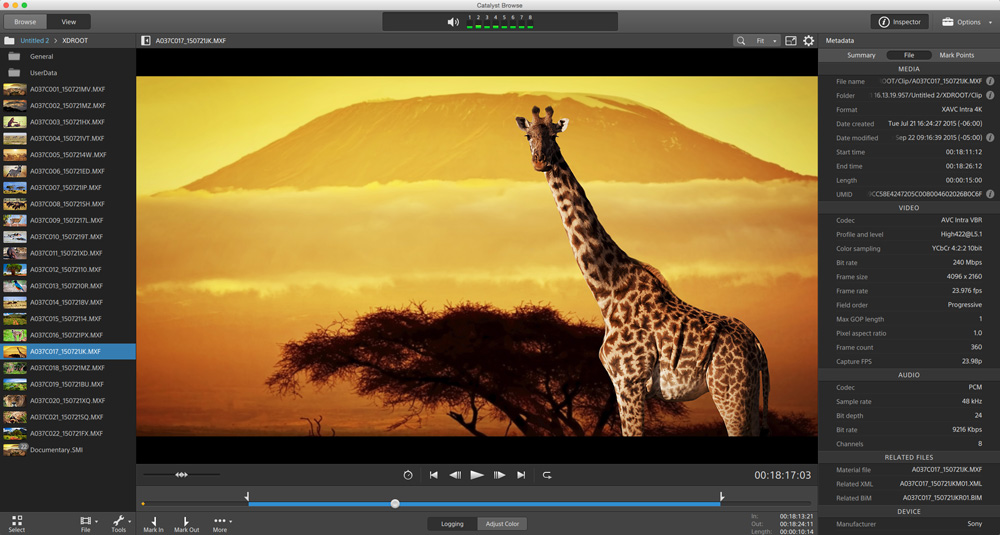 visage media viewer how to download images