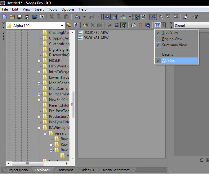 incorporating raw images into your vegas pro projects